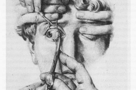 Drawing by Nicolas-Henri Jacobe in Traité de l'anatomie de l'homme by Marc-Jean Bourgery, 1839.